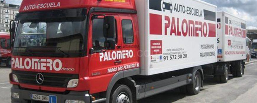 camion_grande_palomero copia